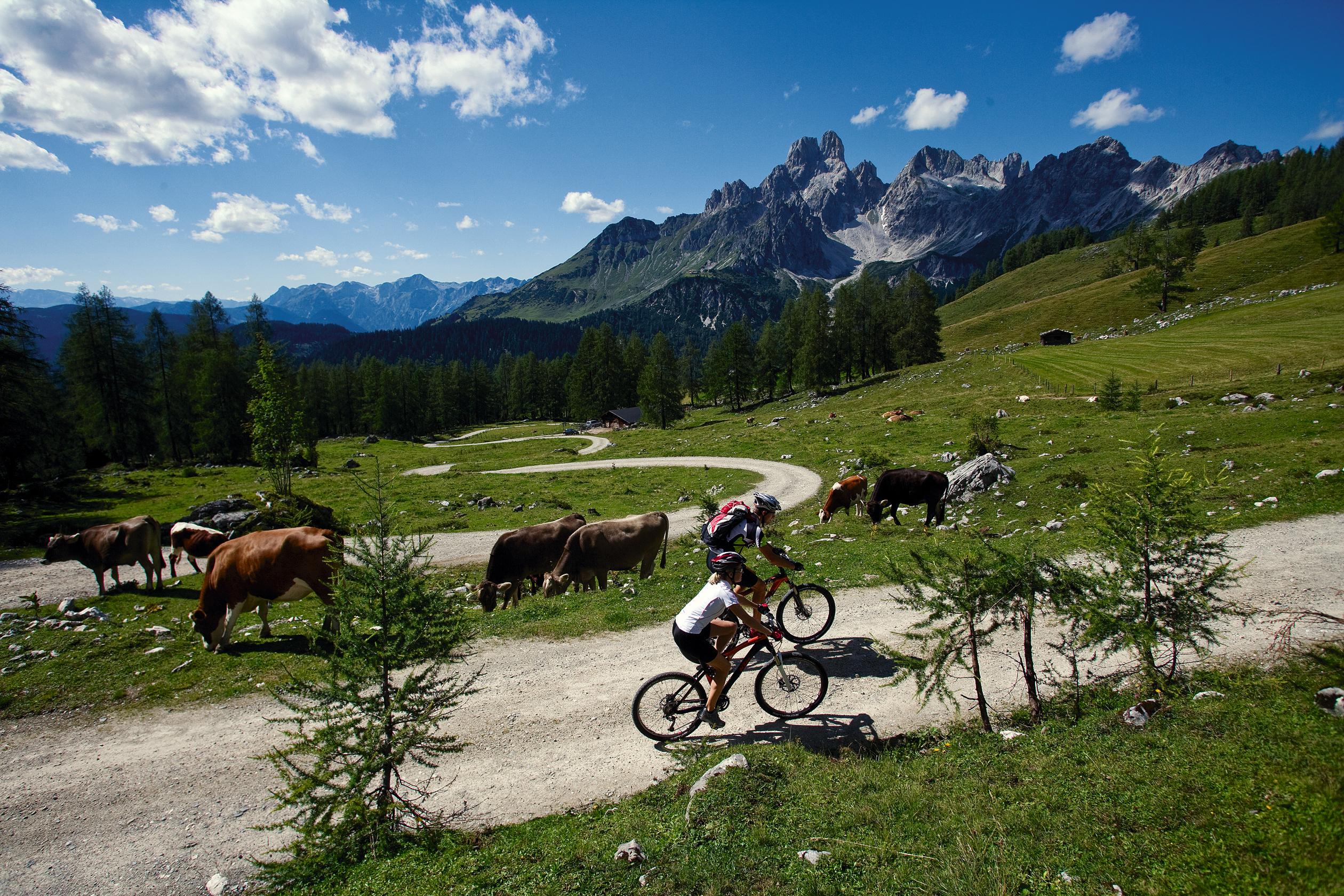 Mountainbiking bei Filzmoos / Salzburger Land © Österreich Werbung, Fotograf: Himsl