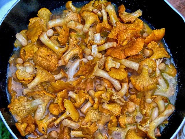 Pilze, Essen