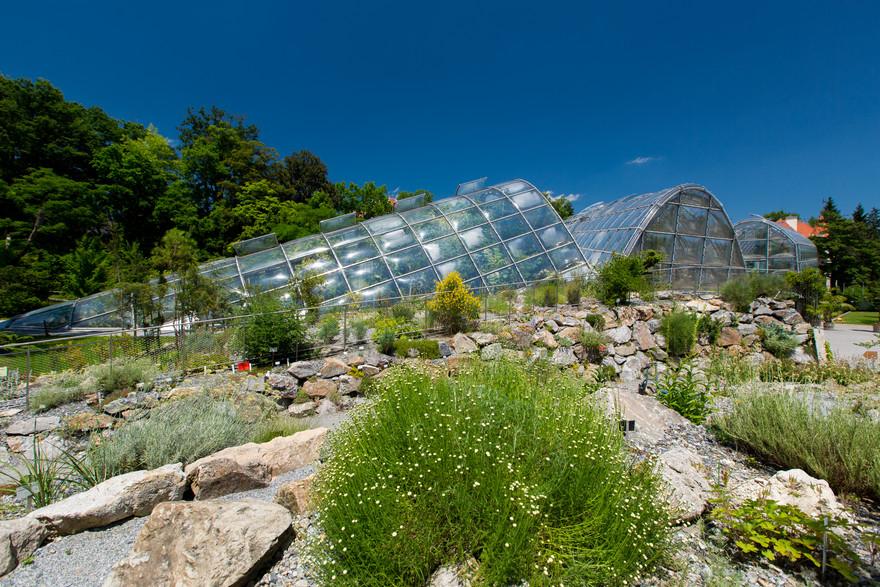 Botanischer Garten © Graz Tourismus - Harry Schiffer