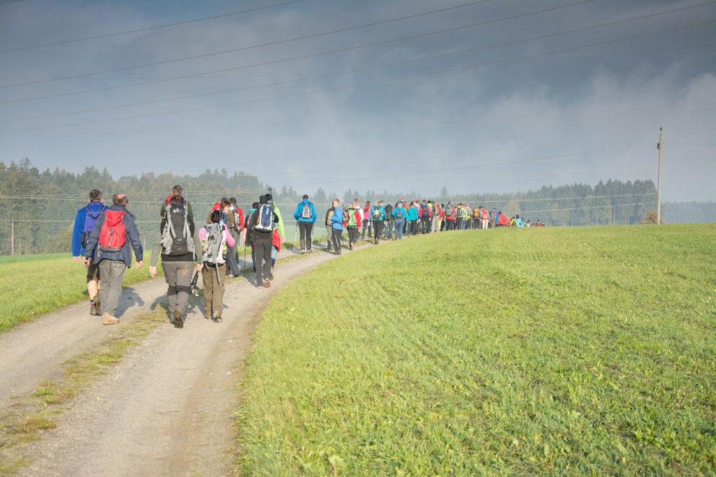 24-Stunden Wanderung. (c) Gerald Bischof. Donau Niederösterreich